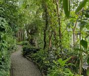 Pawilon roślin użytkowych