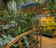 Pawilon roślin tropikalnych