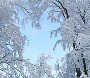 Czantoria zimą