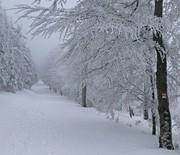 Szyndzielnia-Klimczok zimą