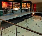 Muzeum Częstochowskie - Rezerwat Archeologiczny