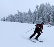 Cisowa - wyciąg narciarski