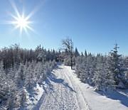 Na szlaku Szyndzielnia-Klimczok
