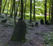 Cmentarz żydowski na górze zamkowej w Będzinie