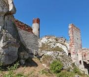 Zamek Królewski w Olsztynie
