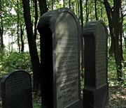 Cmentarz żydowski w Zawierciu